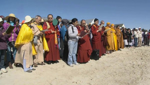 Buddhist Horseshoe Crab Rescue and Blessing Ceremony: Dharma Assembly