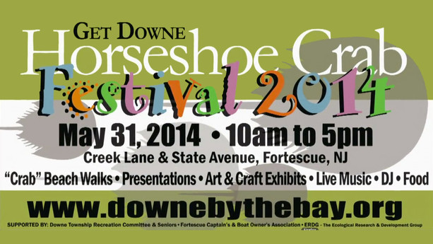 Downe Township Horseshoe Crab Festival 2014