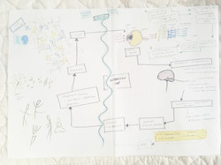 interaction mapping