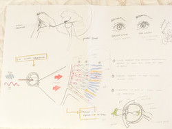 journey mapping physiology