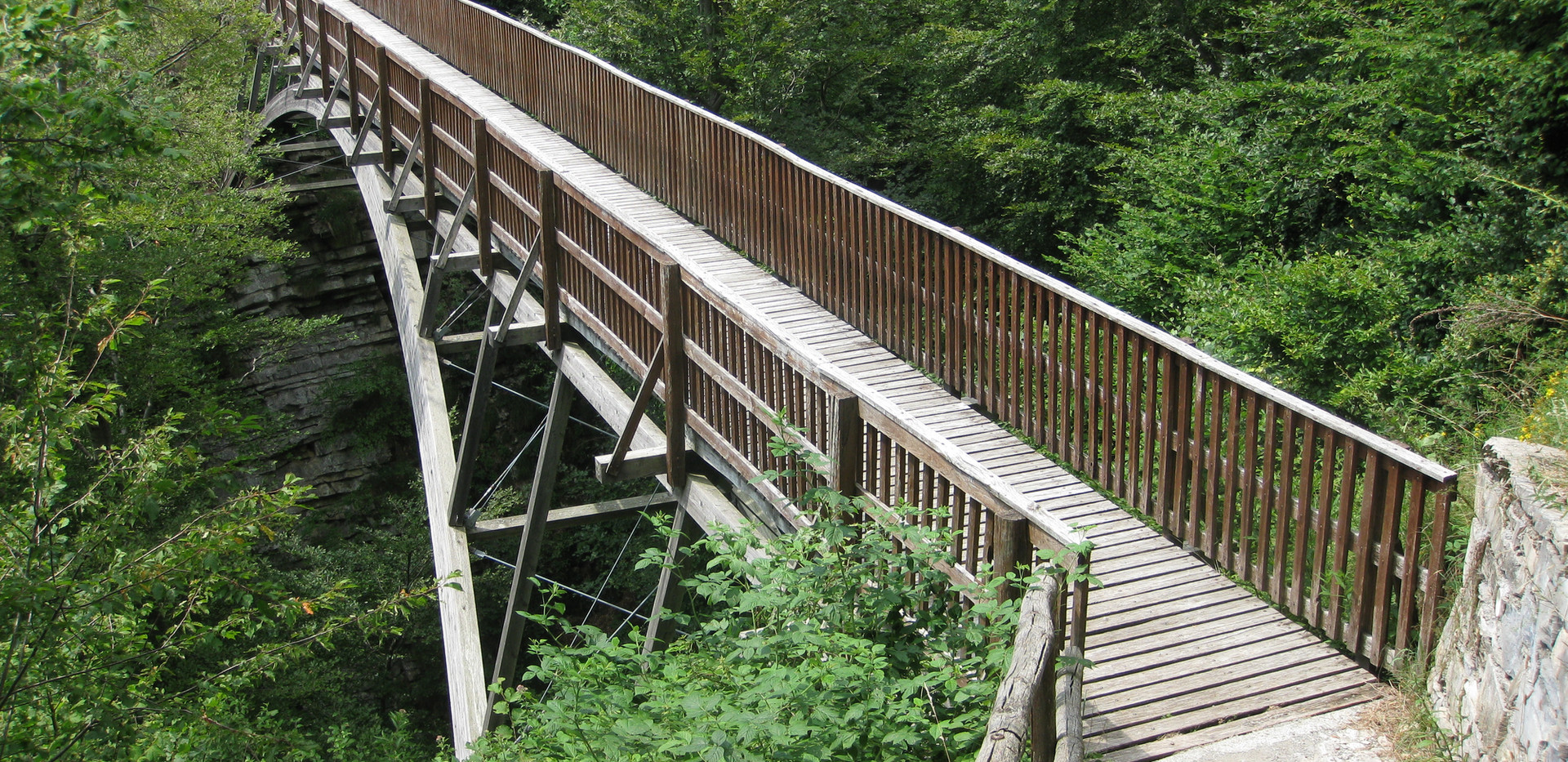 Fussgaengerbruecke Val di Muggio_1