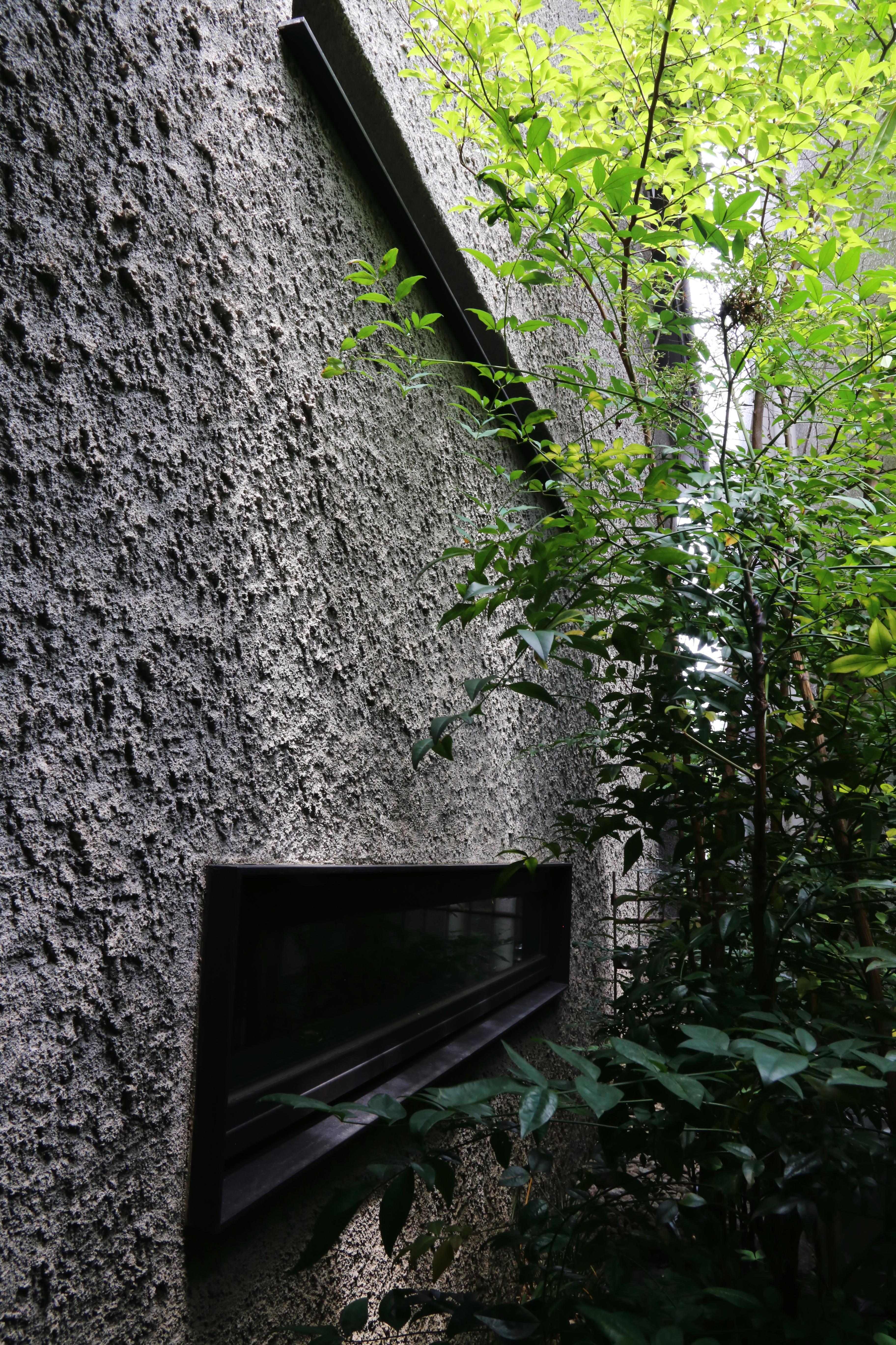 03_路地脇の庭