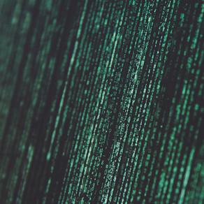 Mensagens Secretas: dos Pirilampos, ao Humano, ao Computador
