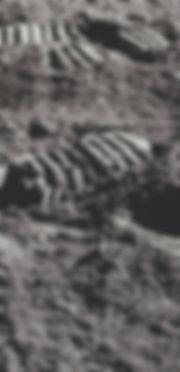371255main_Seismic_full.jpg