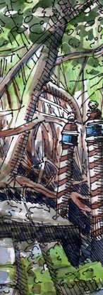 Mangrove Dock