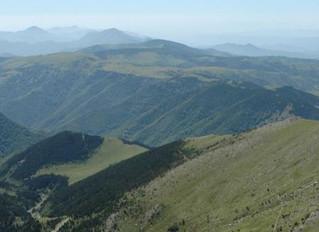 Réserve naturelle nationale de Prats-de-Mollo-la-Preste