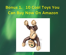 Bonus 1. 10 Cool Toys You Can Buy Now On