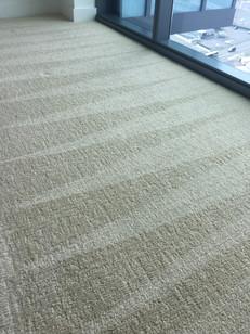 carpet cleaning honolulu