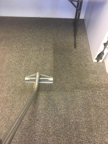 What Are Average Carpet Cleaning Prices