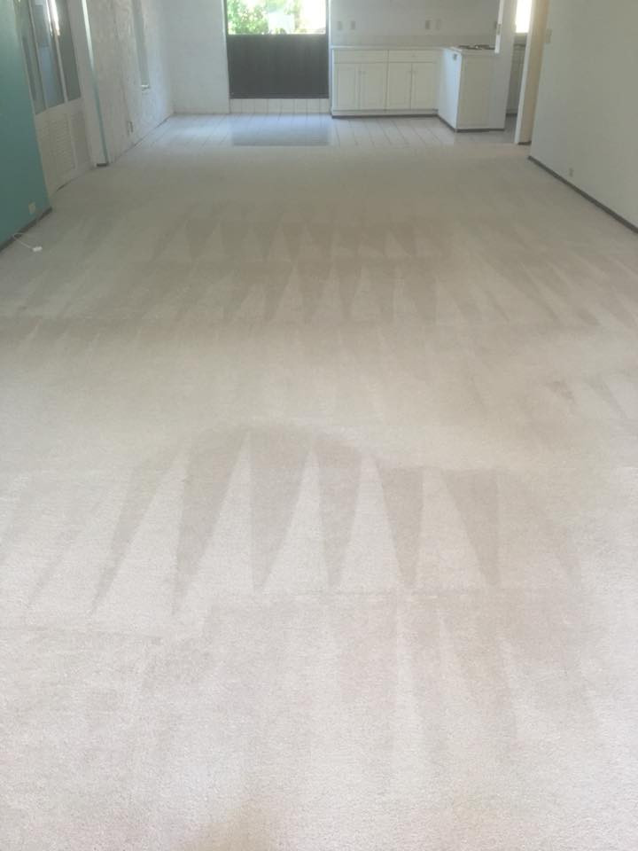 from Excellence Carpet & Cleaning