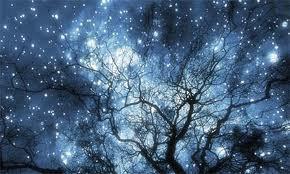 winter-solstice-longest-night.jpg