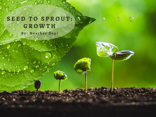 Seed to Sprout: Growth