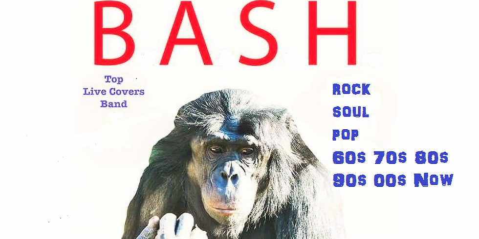 National BBQ day !! Live Music with BASH - Free Entry