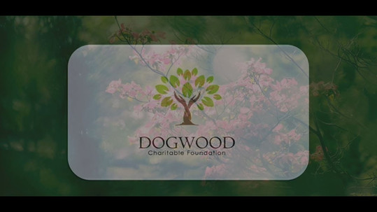 Dogwood Charitable Foundation Modesto Westside Church Part 2 OP