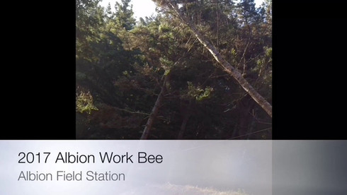 Dogwood Charitable Foundation Albion Work Bee September 17-22, 2017