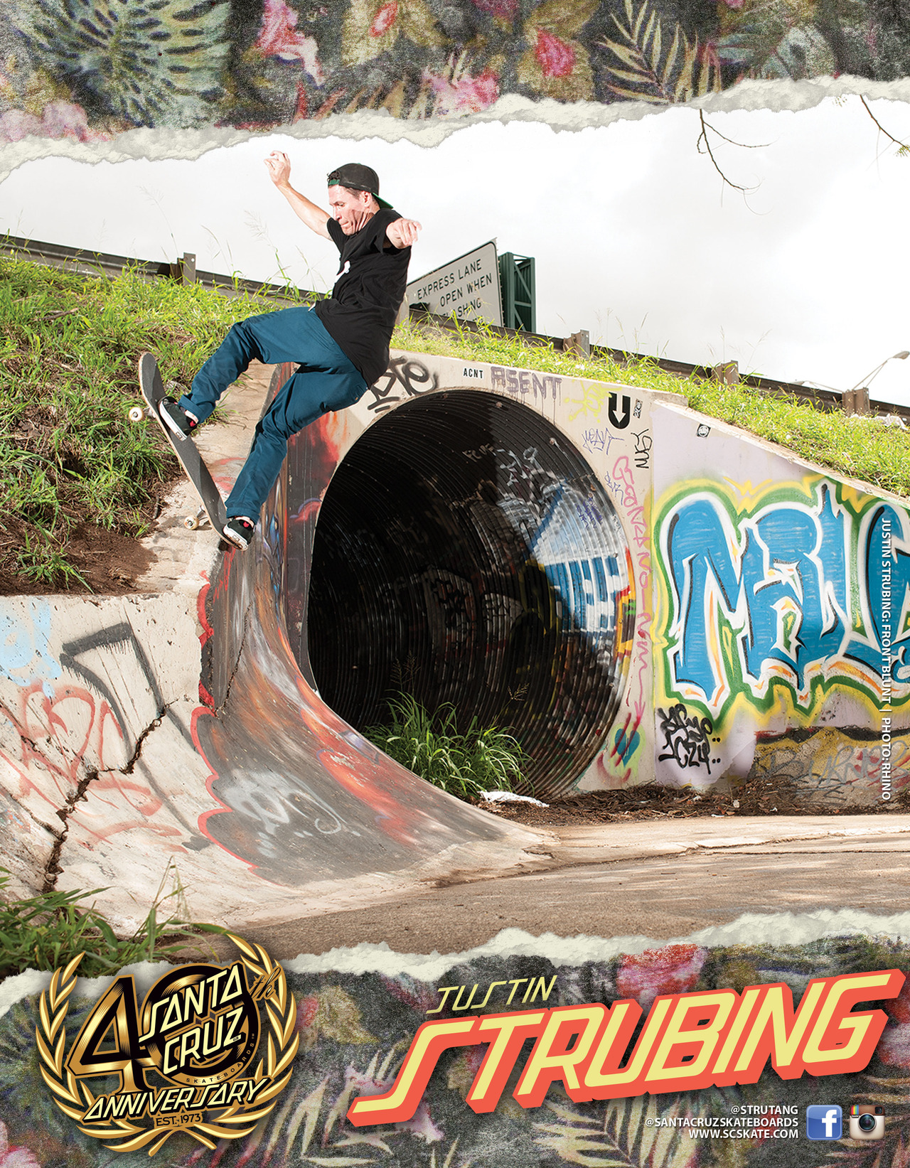 SANTA CRUZ SKATEBOARDS - STRUBING