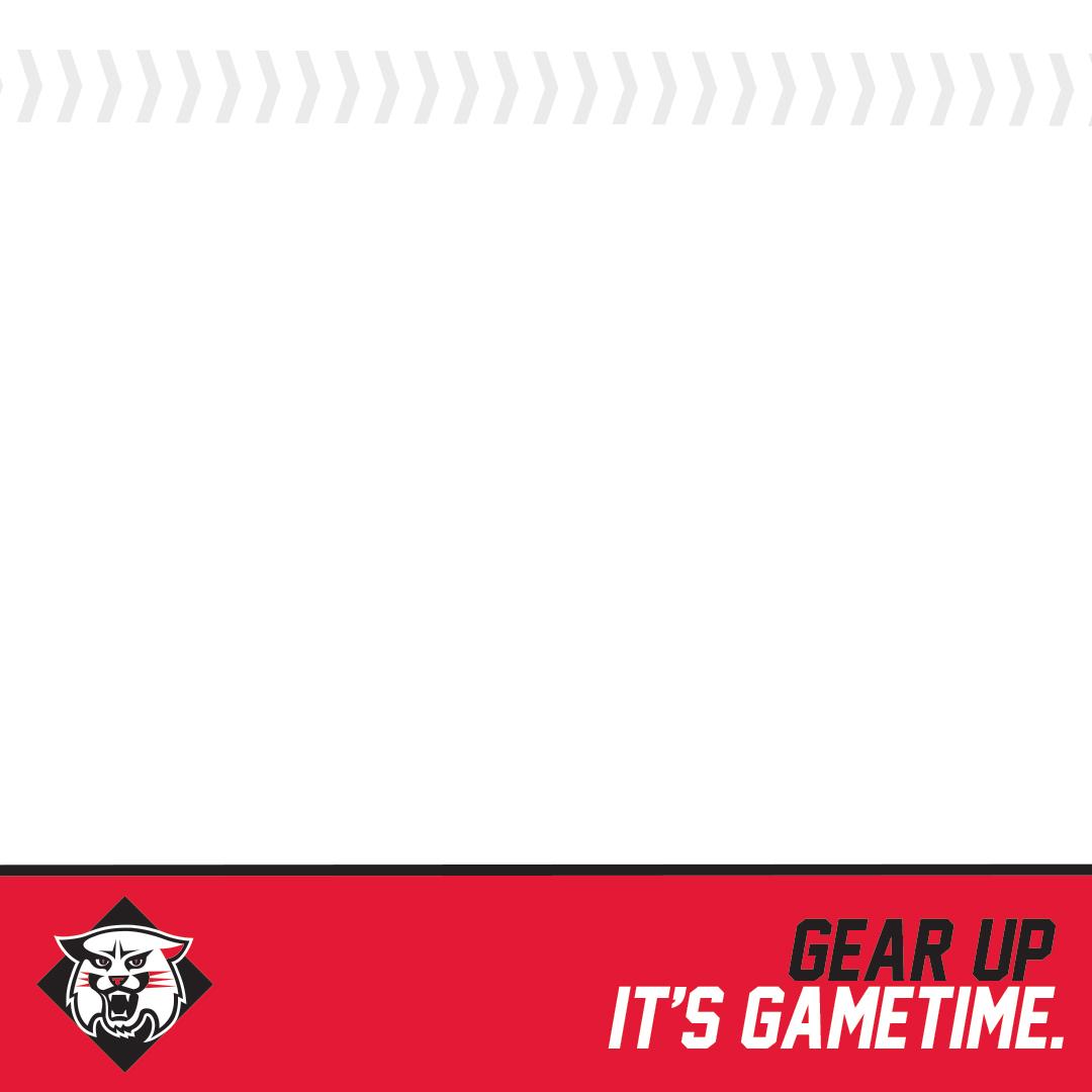 Davidson - Baseball Template