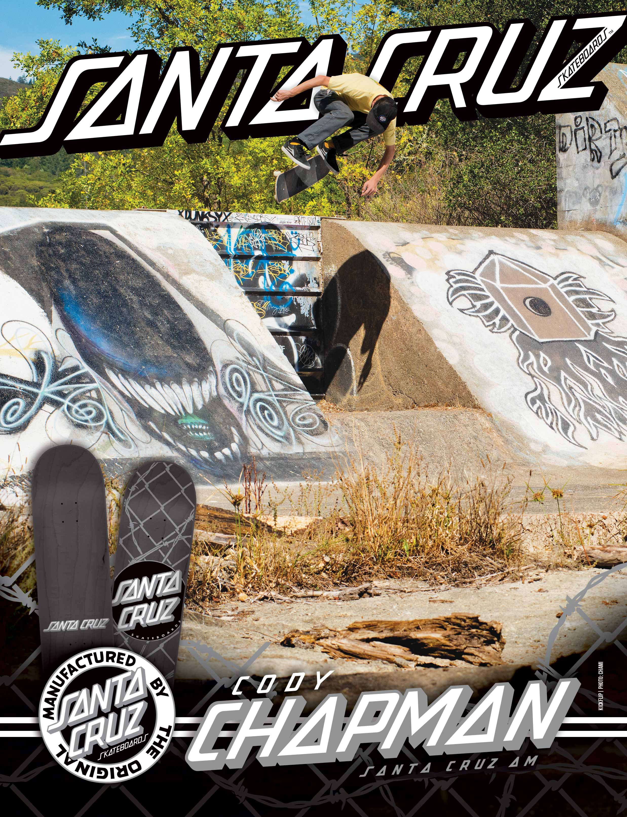 SANTA CRUZ SKATEBOARDS - CHAPMAN