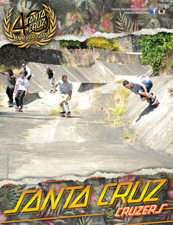 SANTA CRUZ SKATEBOARDS - WALLOWS