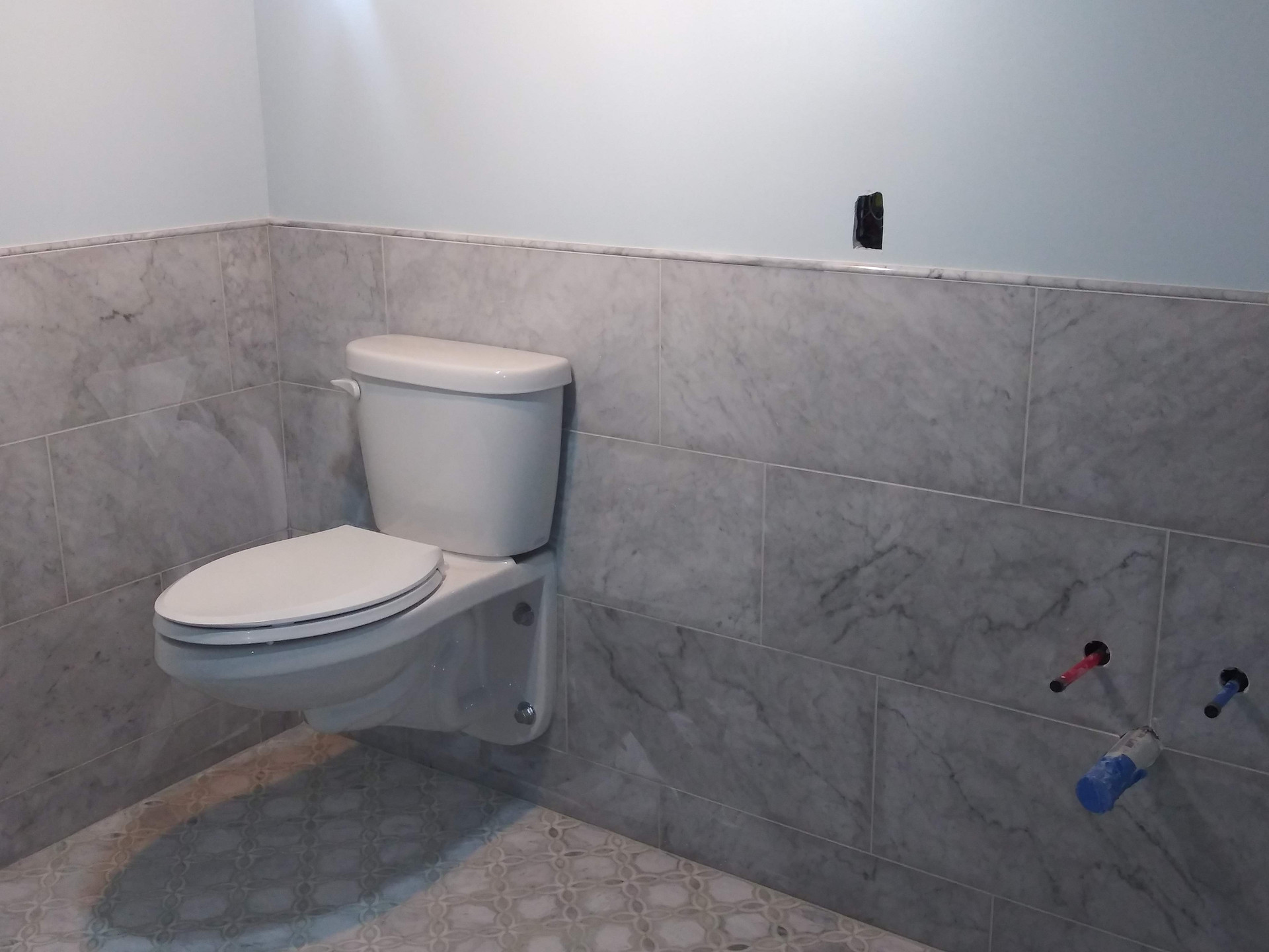Toilet, Flooring and Half Wall Tile finished