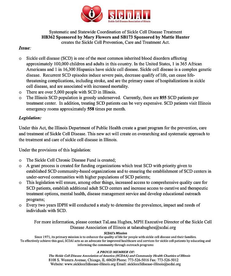 feb 2021 fact sheet.png