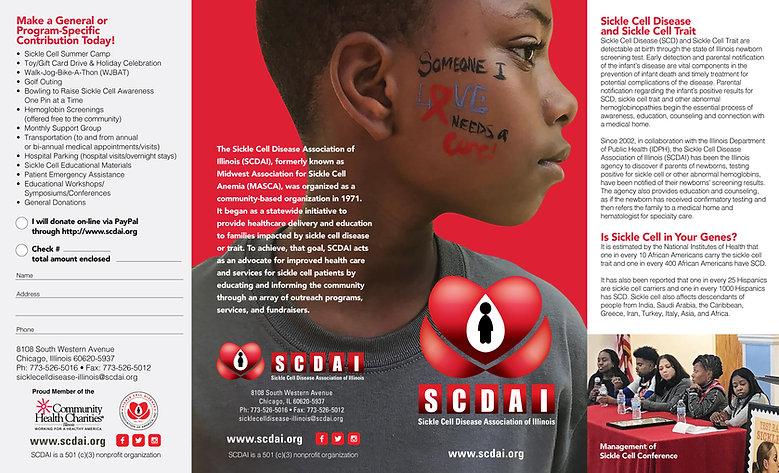 SCDAI Brochure2020outside.jpg