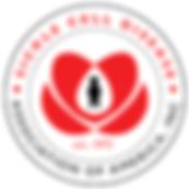 SCDAA Logo .png