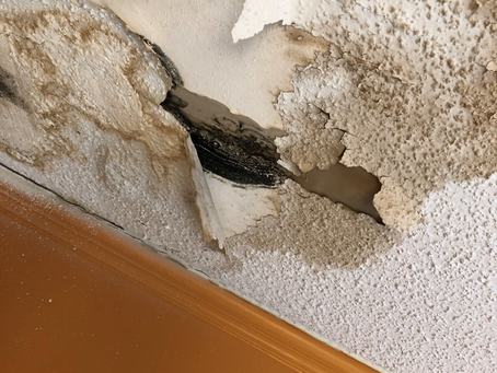 When a Mold Problem Requires Demolition