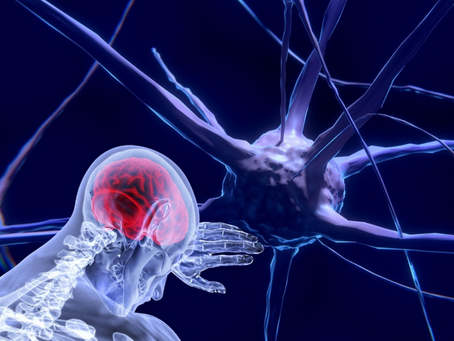 New Multiple Sclerosis Research Inspires Hope