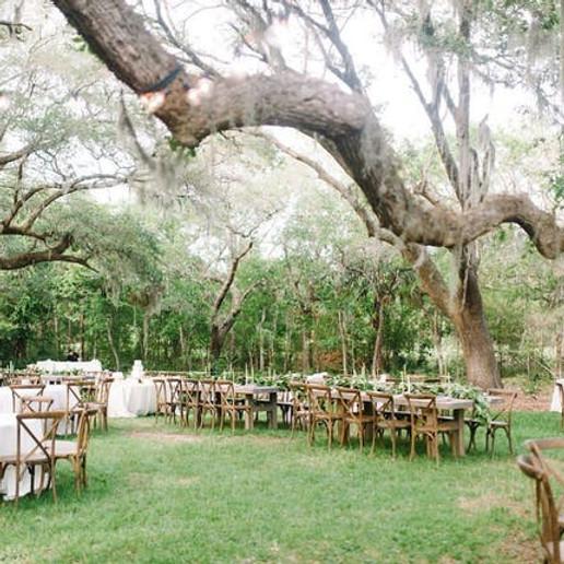 Wedding Reception - Wingate Place