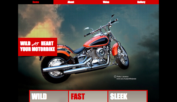 Business template – Motocicletta Selvaggia