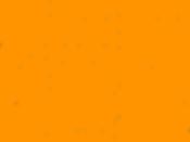 Quartermaster-web-final-dots-yellow2.png