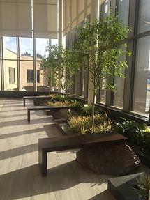BHS Interior Landscape.jpg