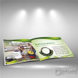Brochure tipo revista