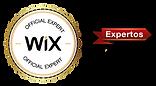 wix.com-expertos-wix-arena.png