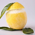 Citron givrée