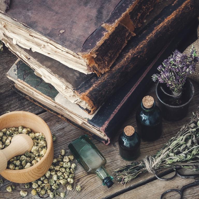 Wise Way Series: Herbal Medicine 101  (1)