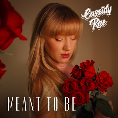 meant to be single cover.png