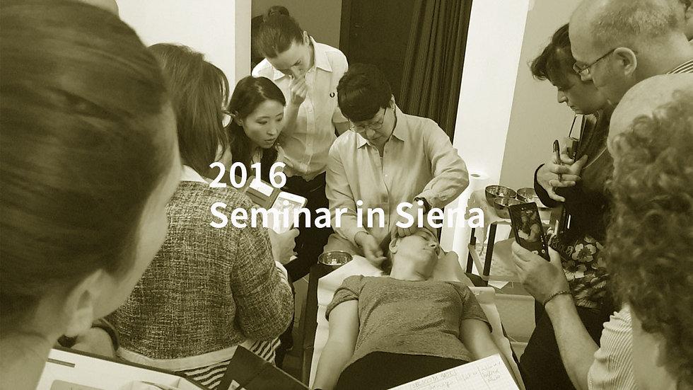 2016 Seminar in Siena