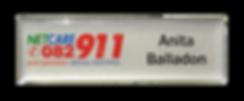 Badge%2085.png