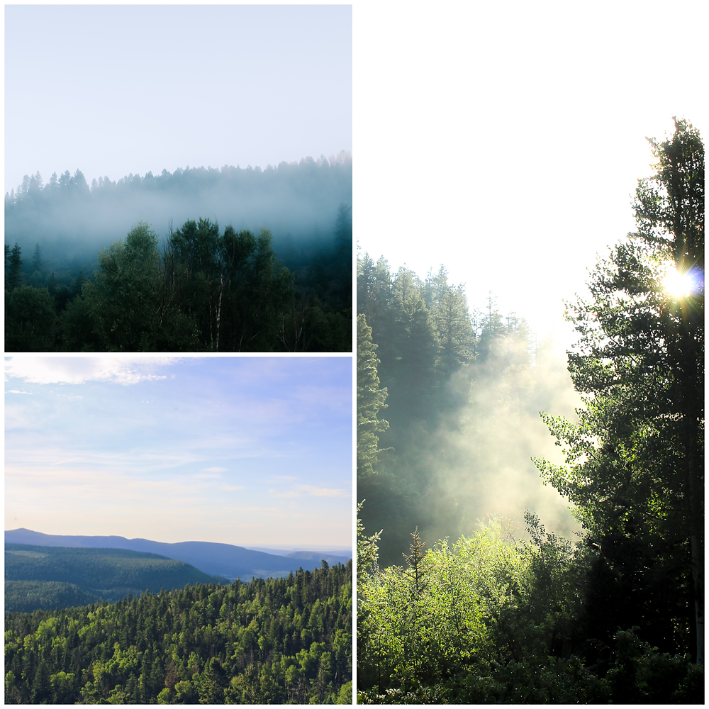 Nature_Landscape_Property_Photographer