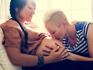 Understanding the Process as LGBTQ+ Parents