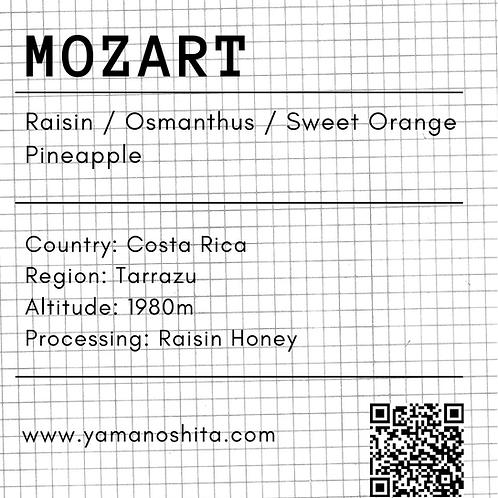 Musician Series - Mozart