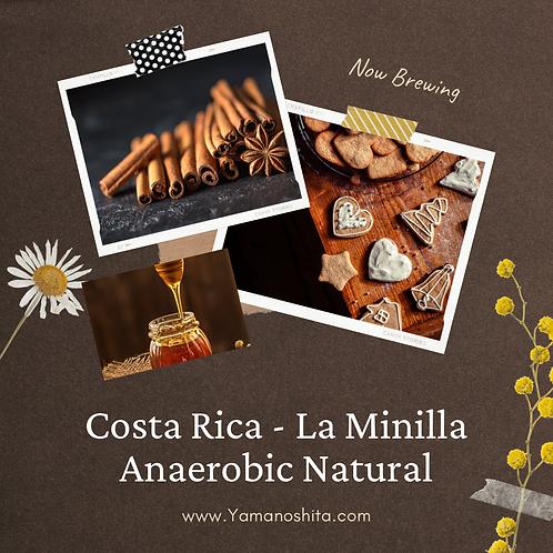 Costa Rica - La Minilla