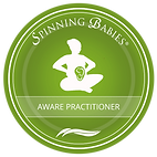 Aware-Practitioner-1.png