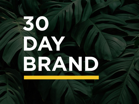 DIY a Brand in 30 Days