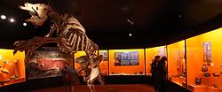 museo de colchagua.png