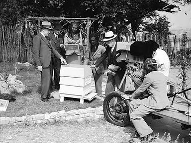 tv on beekeeping 1938.jpg