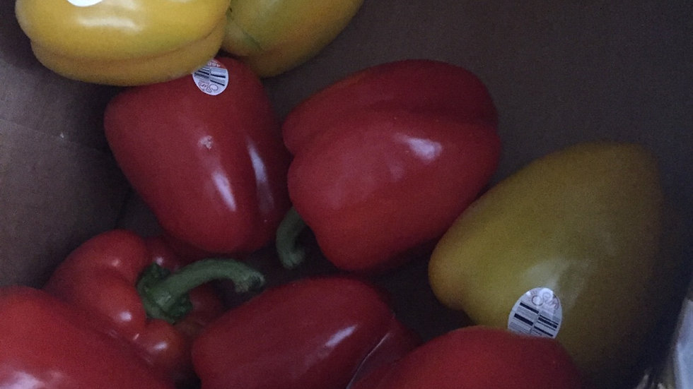 WF 3 pack Suntastic Sweet Bell Peppers