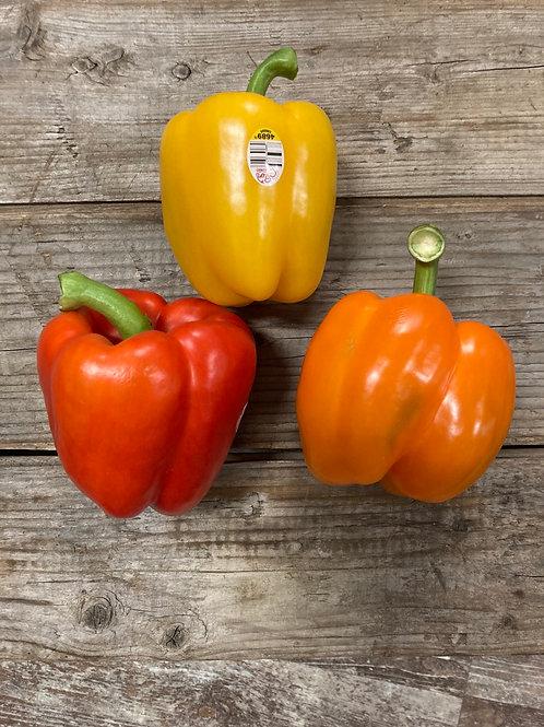 3 pack Suntastic Sweet Bell Peppers